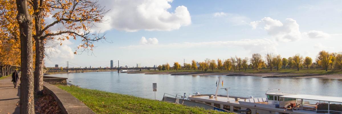 Rhein Stockum